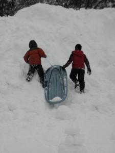 Goin' sleddin'